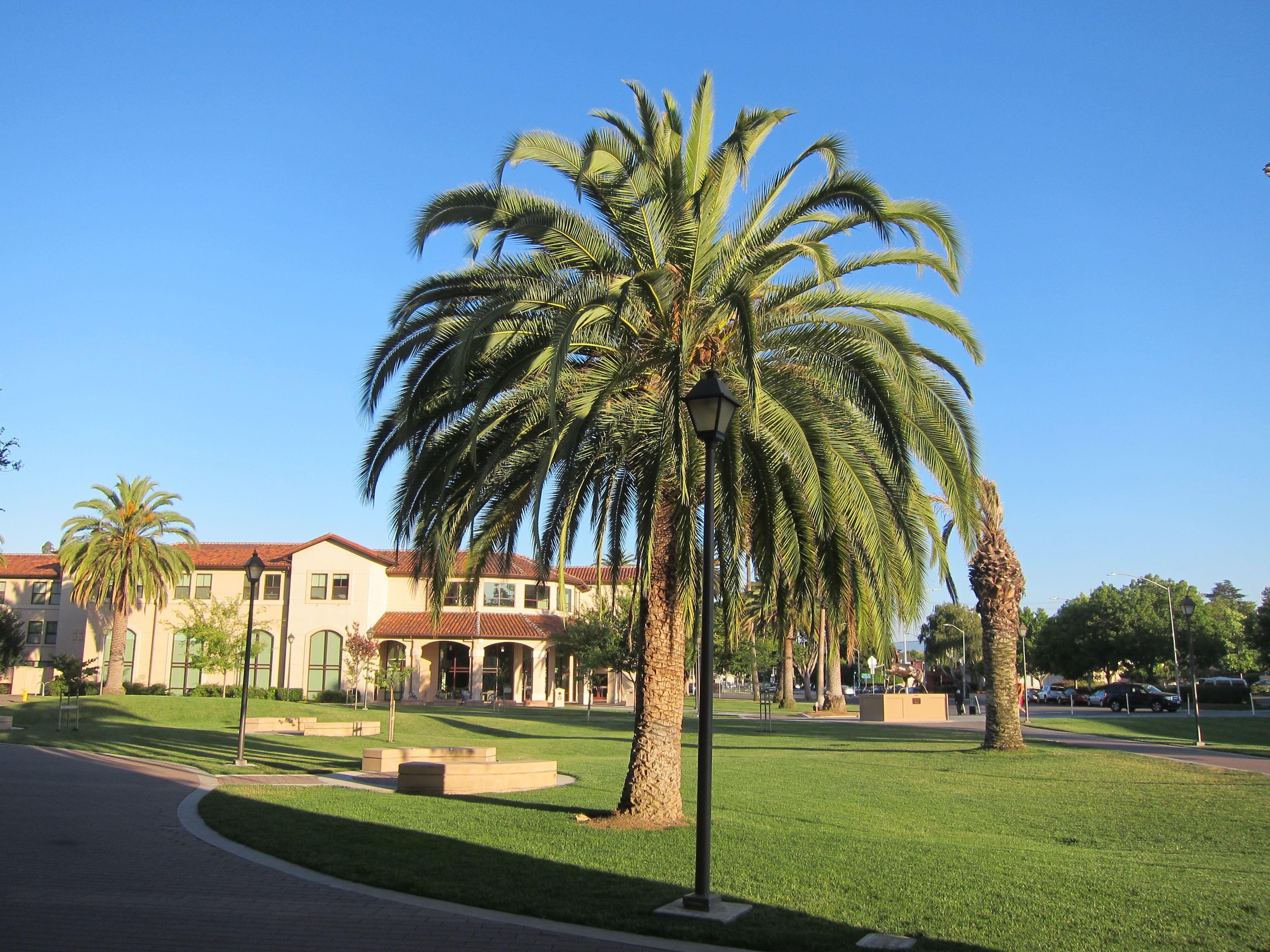 tenth triennial conference recap conference on the santa clara university
